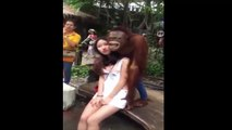 Funny Chinese videos chinese