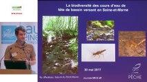 11 - La Truite fario : déplacements et obstacles à l'écoulement par Céline Le Pichon, ingénieure de recherche, Institut national de recherche en sciences et technologies pour l'environnement et l'agriculture (IRSTEA)
