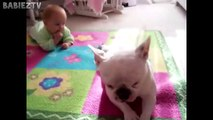 Cute Dogs and Babies Crawling Together - Adorable babies Compilation-IEEo5pIKe
