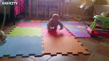 Cute Dogs and Babies Crawling Together - Adorable babies Co