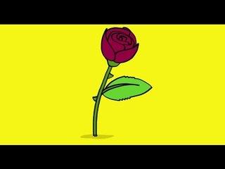 Apprendre à dessiner une rose.