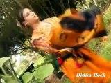 Kabyle Danse 1 Clip Filles de Kabylie