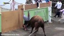 Un homme s'est encorné et piétiné par un taureau furieux parce qu'il était trop occupé à filmer avec son iPad