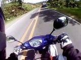 443.Dog vs Motorcycle rider caught on cam helmet accident crash