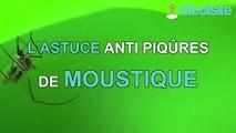 L'astuce anti piqûres de moustique