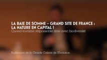 La Baie de Somme - Grand site de France : la nature en capital! (2/4)