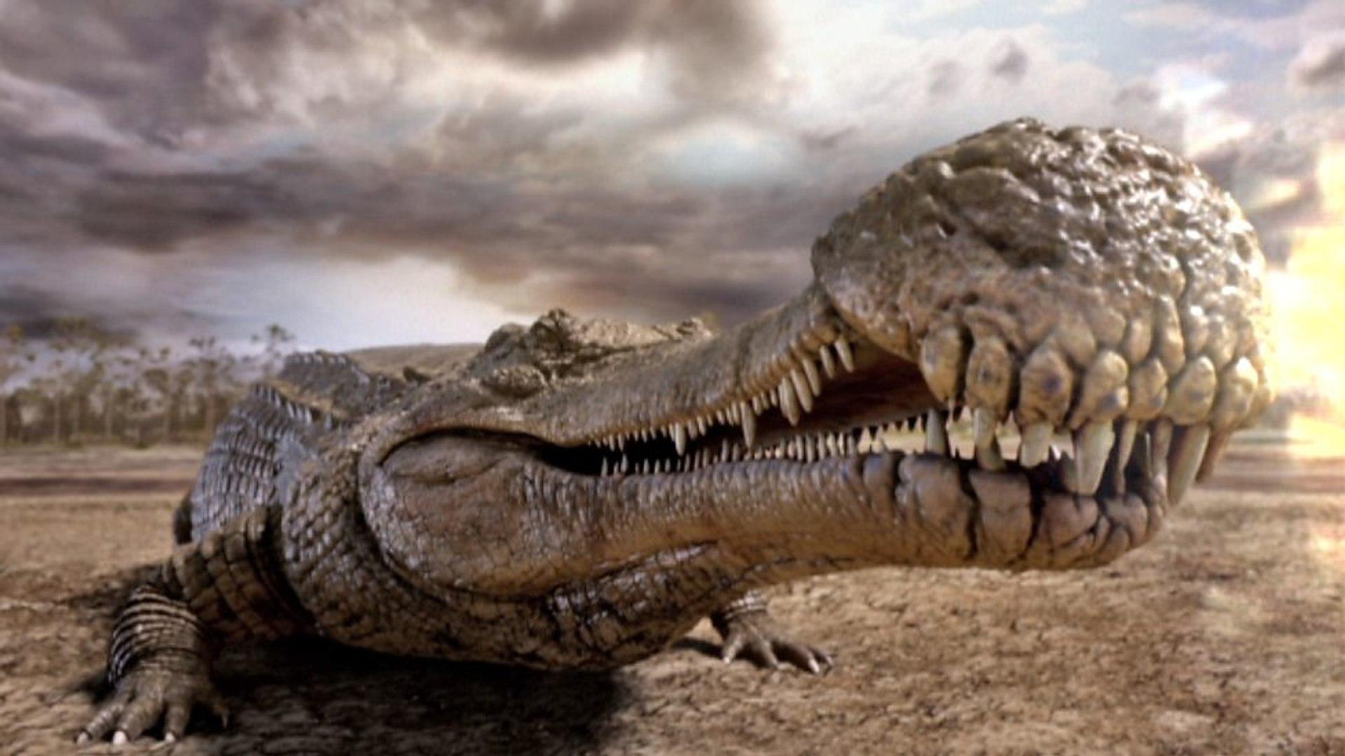 """Résultat de recherche d'images pour """"Crocodile prehistorique"""""""