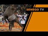 Le combat de Lac de Guiers 2 contre Yekini commenté par Bour Guéwél. Regardez
