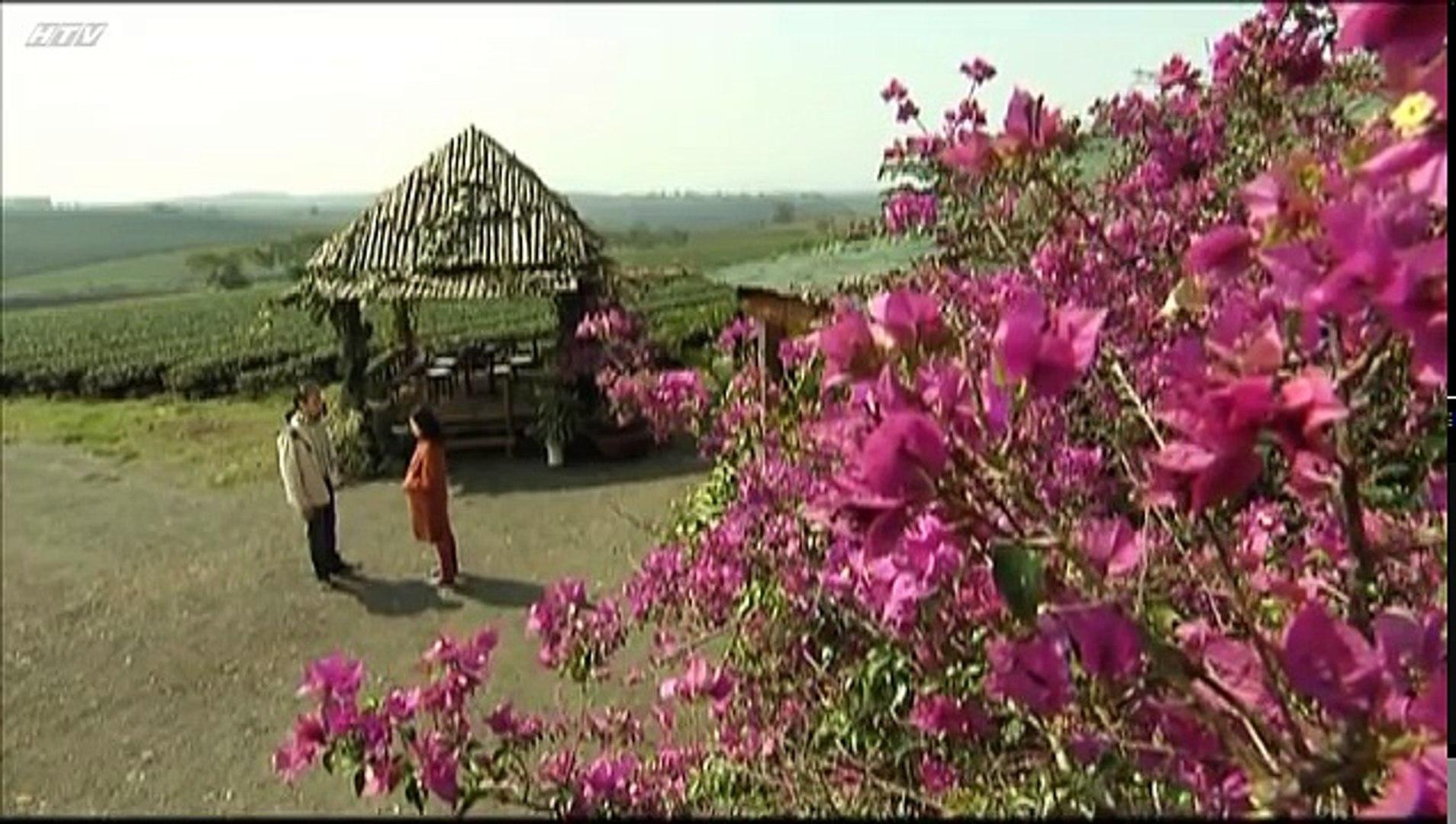 Phim Tóc rối Tập 43 - Phim Việt Nam