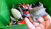 x Sea Animals Toy Whales sea