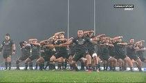Haka des Maori All Blacks face aux Lions Britanniques