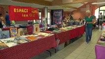 D!CI TV : un atelier manga et un dessinateur de Nice pour le salon du livre du Champsaur