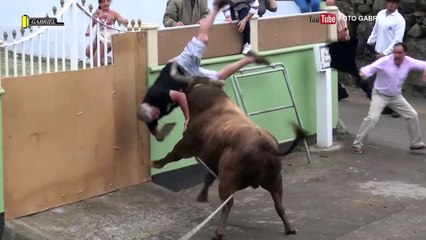 Un gros taureau attaque un homme qui filme avec son iPad