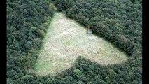 L'homme a planté 6000 arbres en mémoire de sa femme. Mais 17 ans plus tard? Il révèle enfin son énorme secret