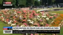 Champs-Elysées: Un véhicule percute une camionnette de gendarmerie et prend feu - La police sur place