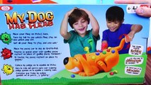 Et planche chat chats défi chasse ce chien la famille amusement amusement Jeu nuit jouets Surprise fraidy