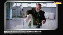 Un chimiste allemand invente une éponge pour absorber le pétrole