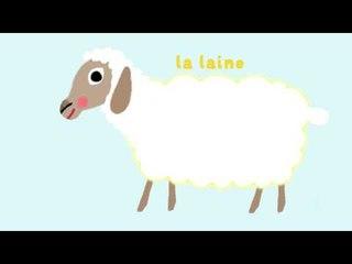 Le mouton - Découvre les animaux de la ferme avec Pinpin et Lili