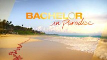 'Bachelor In Paradise' Resumes Filming After Major Investigation  | THR News
