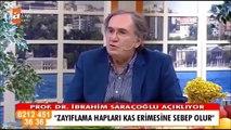 Yağ Yakan Tilya Kürü Nasıl Yapılır | Prof. Dr. İbrahim Saraçoğlu