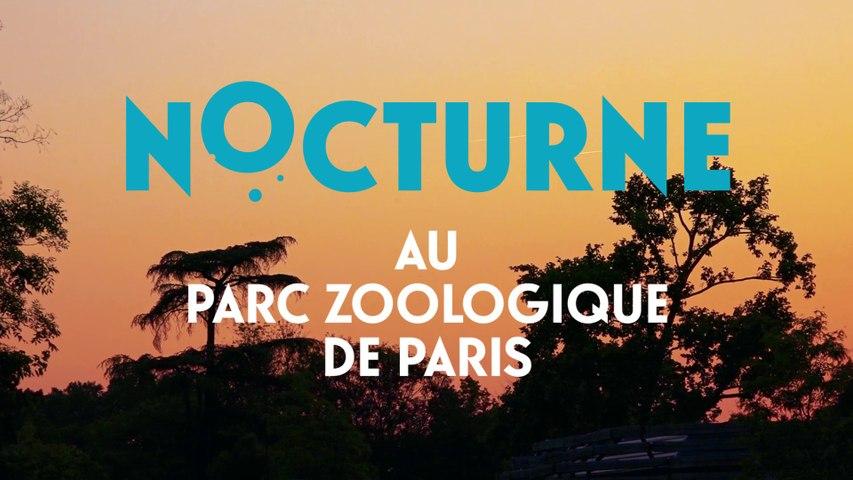Nocturnes au Parc Zoologique de Paris