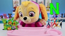 LEARN ABC Alphabet Song with Paw Patrol Baby Skye Learning Colors and ABCs for Children &