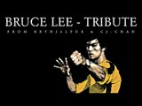 Bruce Lee - Tribute from  Brynjólfur