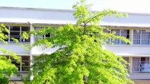 École Diwan de lorient