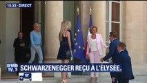 Arnold Schwarzenegger remonte les marches du perron de l'Elysée pour saluer Brigitte Macron