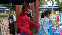 Baie faire glisser eau elsa le long araignée et voir le disque de jeu jeu waterslide sensations fortes cr