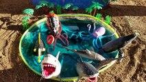 Animaux enfants enfants Apprendre apprentissage mini- des noms de de piscine Mer requin faire glisser tout petit jouets vidéo