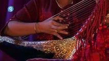 Saùng-gauk Burmese harp   Harpe birmane - Myanmar (Burma)