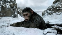 """Critics Hail """"War for the Planet of the Apes"""""""