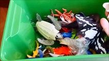 Shark Toys Kids Toy Box Sea Animals Toy Whales sea turtlessd