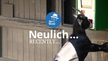 Birrs World - Neulich Im Zoo Berlin - Self Service I