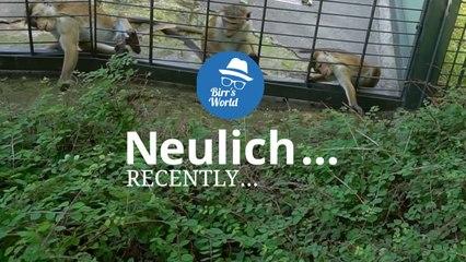 Birrs World - Neulich Im Zoo Berlin - Self Service II