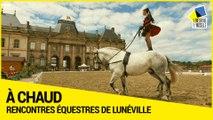 [A Chaud] 7e édition des Rencontres équestres de Lunéville