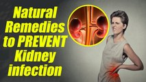 Kidney Infection prevention with Natural Remedies; Check out here | Boldsky