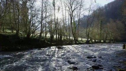Le Parc naturel régional des Pyrénées Ariégeoise (Tour de France de la biodiversité 13/21)