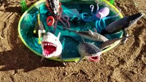 Enfants vidéo requin jouets Apprendre apprentissage des noms de Mer animaux enfants parc faire glisser dans mini-
