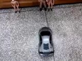 Remote controlled Racing  Toys fo
