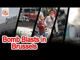 Serial Blasts in Brussels leave 23 civilians Dead and 35 Injured || 2 Blasts in Airport