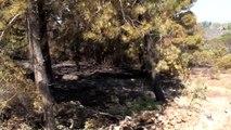Datça Orman Yangının Ardından Geriye Bu Görüntüler Kaldı