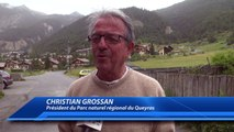 Hautes-Alpes : le parc naturel régional du Queyras fête ses 40 ans