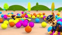 Pour enfants patrouille patte Voir létablissement enfants pour patrouille chiot enfants enseignent canal vidéo couleur max le