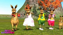 Kangaroo Finger Family and Spiderman _ Finger Family Song _ 3D Animation Nursery Rhymes,Animated cartoons movies 2017