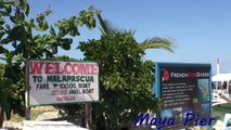 Thresher Cove Dive Resort   Best Resorts in Malapascua Cebu