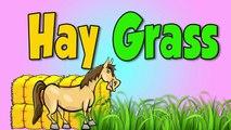 Animaux enfants ferme pour de cheval les chevaux enfants Apprendre chanson le le le le la Blippi