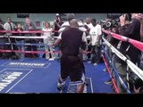 floyd mayweather vs manny pacquiao may go down on showtime EsNews Boxing