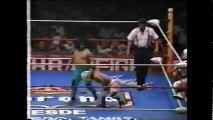 Espectrito/Jerrito Estrada/Pequeno Goliath vs Mascarita Sagrada/Micro Konnan/Octagoncito (AAA June 20th, 1993)